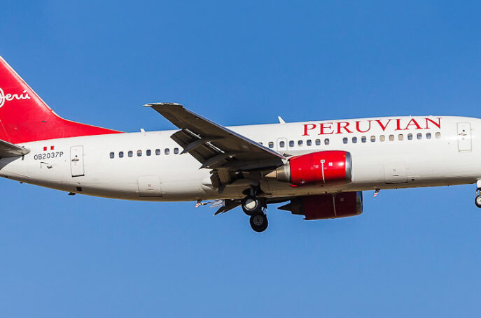 Peruvian airlines web check-in